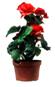 No_Obstruction_Plants